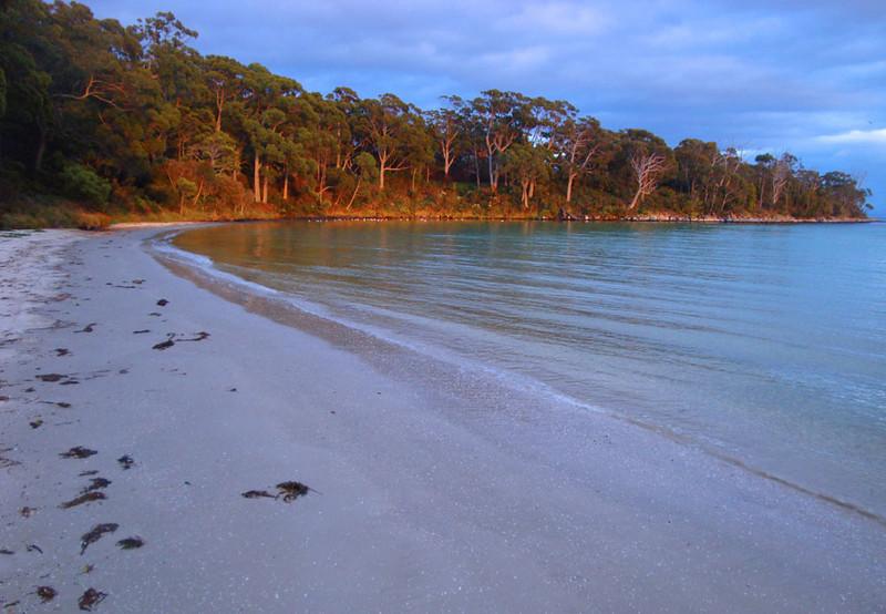 Jetty Beach west.jpg