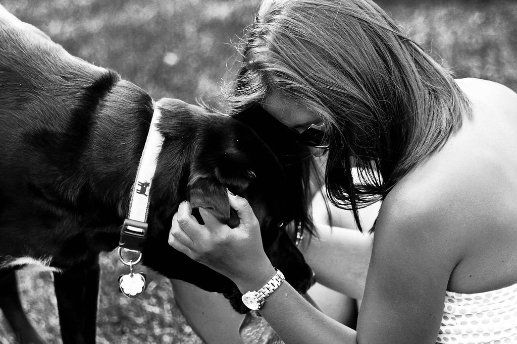 "8/22/11 - Mr Cooper<br /> <br /> ""Dogs are our link to paradise. They don't know evil or jealousy or discontent. To sit with a dog on a hillside on a glorious afternoon is to be back in Eden, where doing nothing was not boring--it was peace.""<br /> - Milan Kundera<br /> <br /> More Dogs: <a href=""http://gregmurray.smugmug.com/Photography/Animals/Dogs"">http://gregmurray.smugmug.com/Photography/Animals/Dogs</a>"