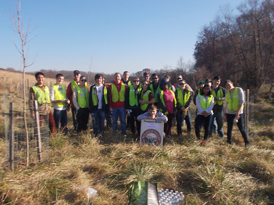 11.16.12 Tree Maintenance Along Thistle Run off Frederick Road in Catonsville