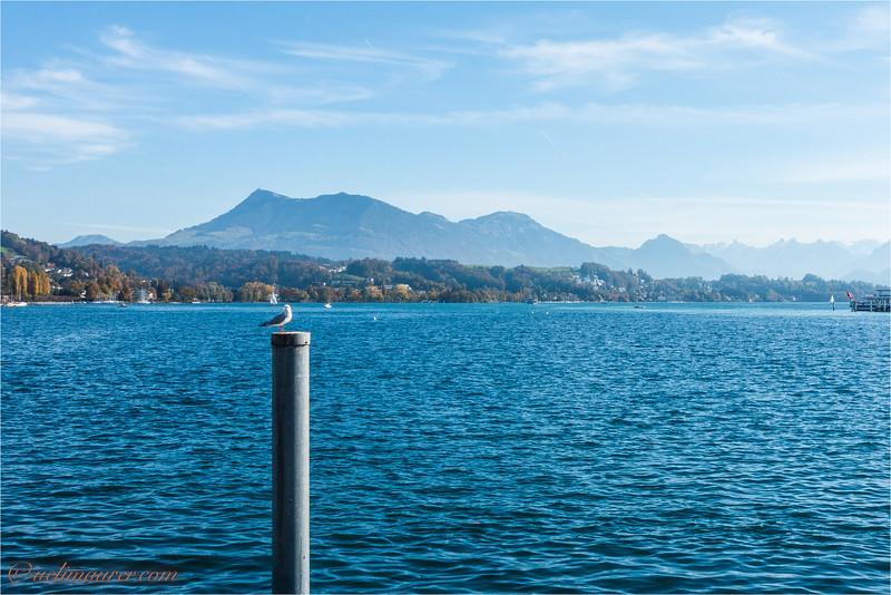 2017-10-17 Luzern - DSC00862.jpg