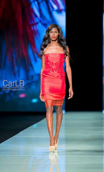 Miami Fashion Week May 2014 Paulo Silvo Collection