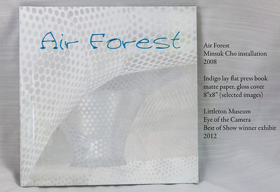 Air Forest