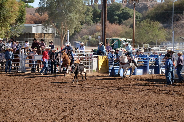 CHSRA District 8 - Steer Roping Saturday