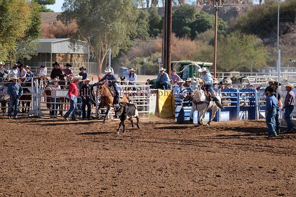 CHSRA District 8 - Steer Roping Saturday