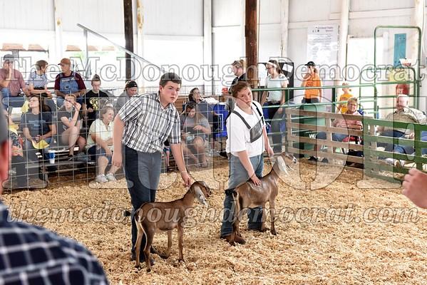 Goat Show 07-11-17