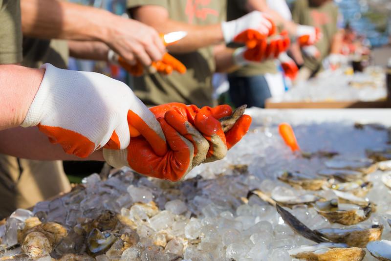 oysterfest-7518.jpg