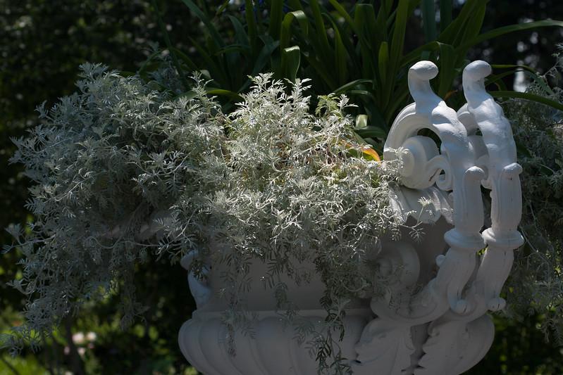 2009 06 30_NY Botanical Gardens_0732.jpg