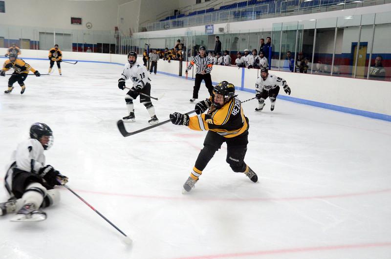 141005 Jr. Bruins vs. Springfield Rifles-016.JPG