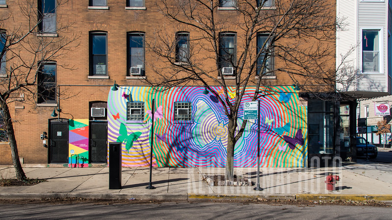 Butterfly Mural in Logan Square