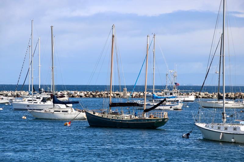 Sailboats Monterey