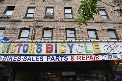 GWB Bike Ride + Central Park Foraging