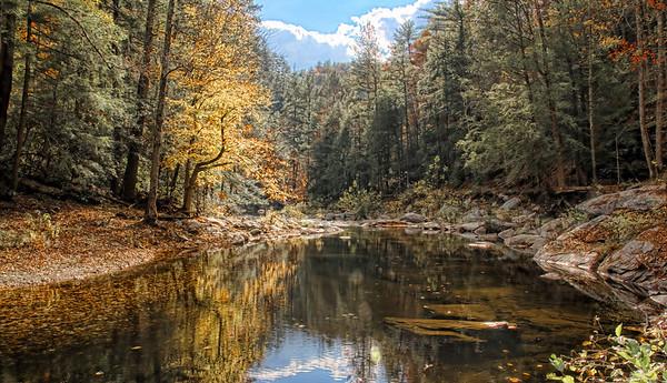 Hiking The Jacks River