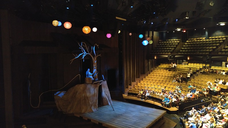 shot of a theater with people in the seats lookint at a stage with a tree on it