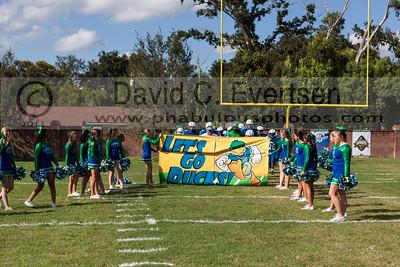 Varsity Cheer - 2013
