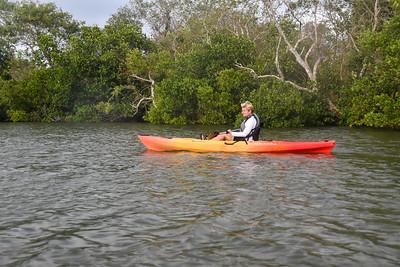 Sunset Bird Rookery Kayak Tour - Clutchey