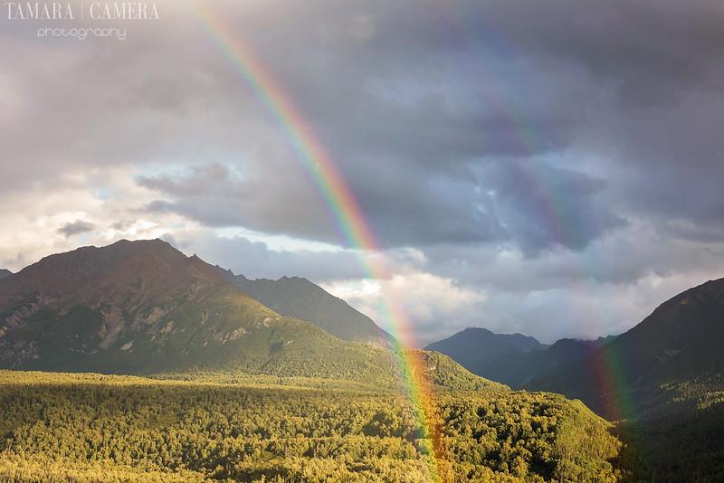 Rainbows-9-2.jpg