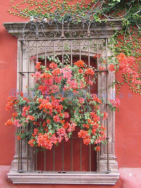 2004/12 MEXICO