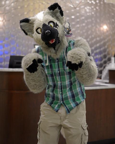 Motor City Furry Con 2016