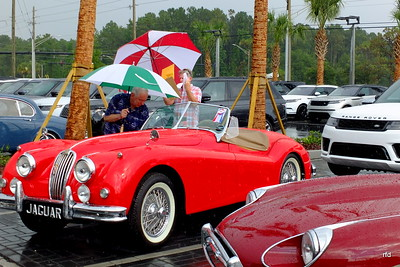 Fields Jacksonville Jaguar/Land Rover New Dealership Celebration