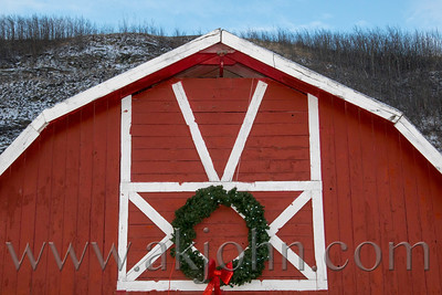 2017 CHRISTMAS EVENT WILLIAMS REINDEER FARM