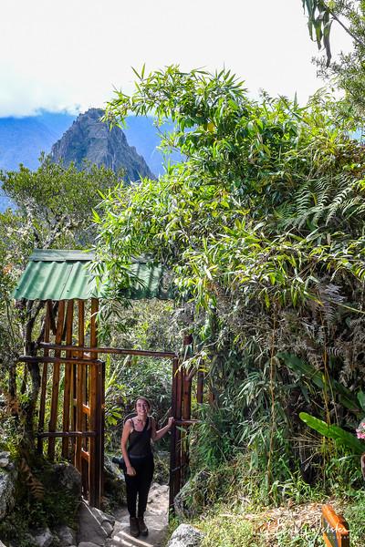 2018 Machu Picchu-58.jpg