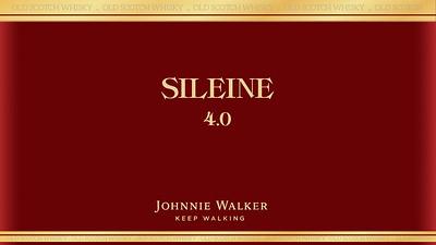 Sileine  14-05-2016