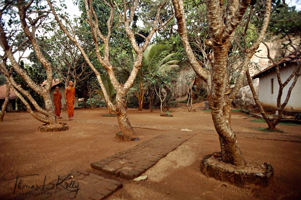 Hinayayana/Compact Way-Individual Liberation. Sri Lanakan monk sets off for morning prayer. Sri Lanka.