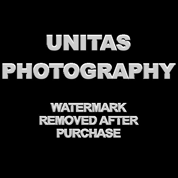 UP_watermark_02