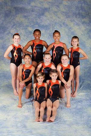 Team 2014 - Xcel Bronze