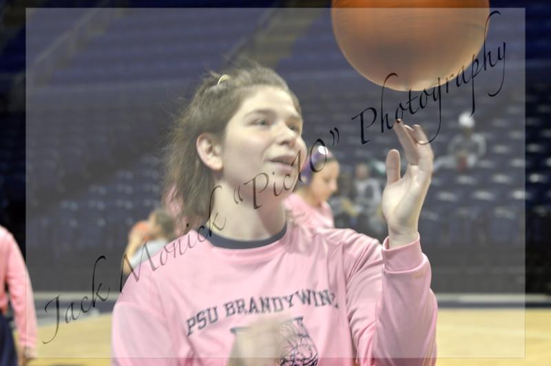 2014 PSUAC Women's Basketball Tournament