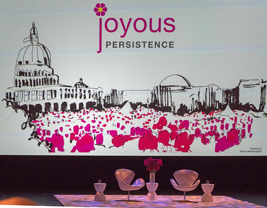 Joyful Persistence, 2017