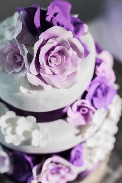 ELP1104 Amber & Jay Orlando wedding 2361.jpg