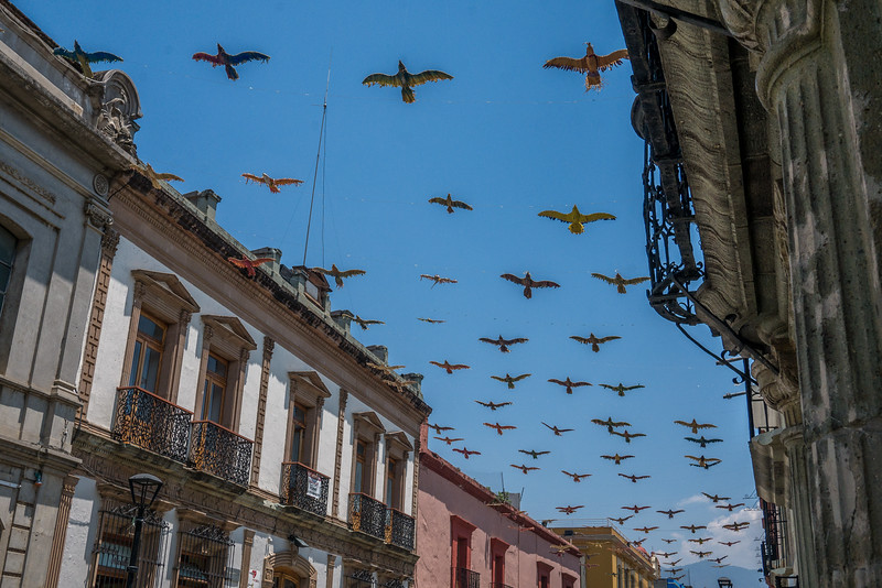 Oaxaca-Centro-3.jpg