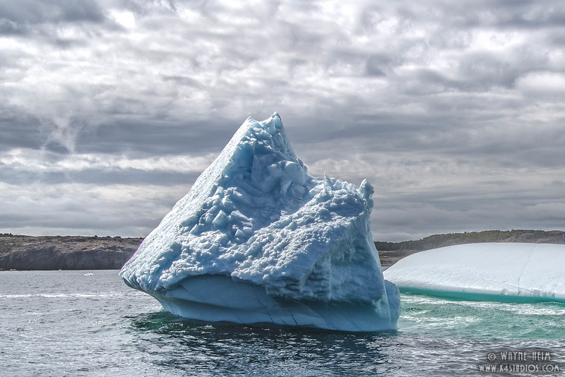 Iceberg 10    Photography by Wayne Heim