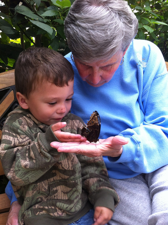 ". Mary Savage and her great grandson Hunter Allen age 3, at the Butterfly Museum in Deerfield Ma. Ashely Clavette writes in an email, ""We lost my grandfather, Mary\'s longtime Husband of almost 50 years in February. We have to come realize how special these wonderful moments are.\"" Photo submitted by Ashley Clavette"