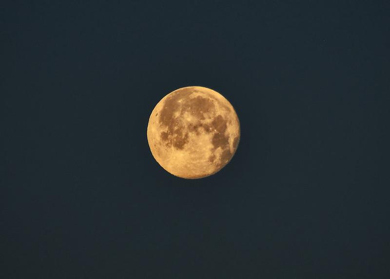 NEA_7018-7x5-Moon.jpg
