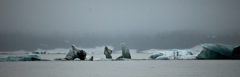 Alaska Copper River-9580.jpg