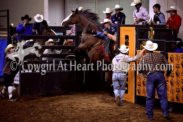 BAREBACK/SADDLE BRONC