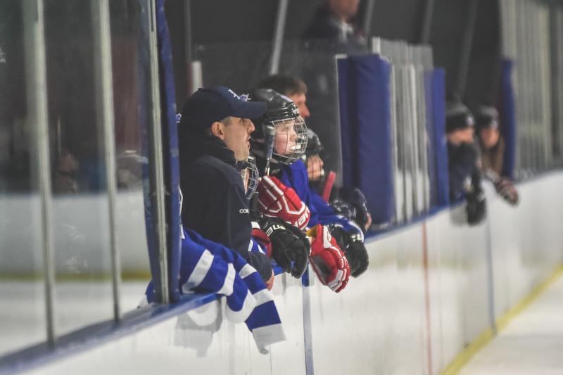 Leafs-91.jpg