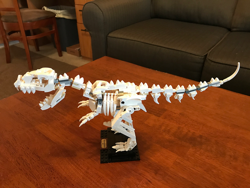 2020-01-21 Deb's LEGO T-REx build
