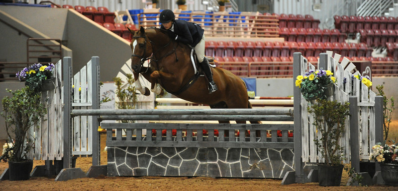 Horse show (54).jpg