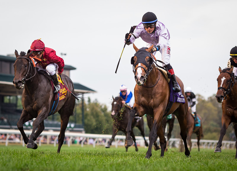 "Peace Achieved (Declaration of War) wins the Bourbon (G3) a ""Win and You're In"" Breeders' Cup Juvenile Turf Division at Keeneland on 10.06.2019. Miguel Mena up, Mark Casse trainer, JSM Equine (Joe Minor) owner."