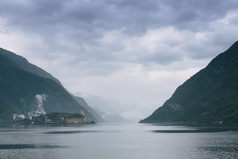 Fjord Beauty, 2015