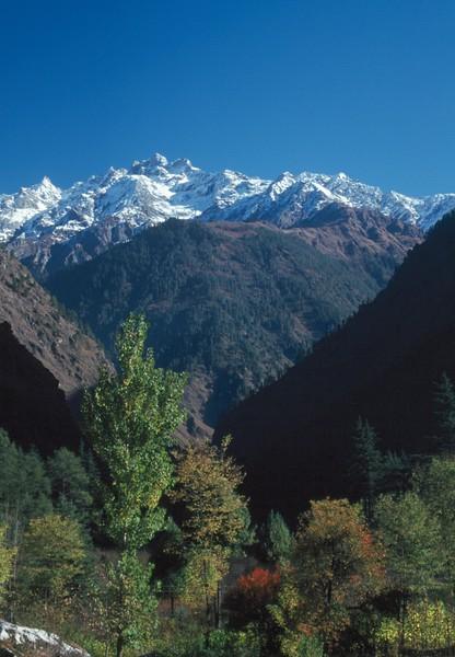 India - Parvati Valley6.jpg