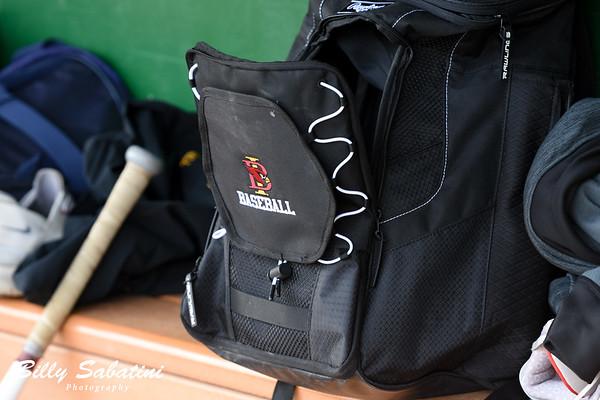 BI Baseball - Spring 2019