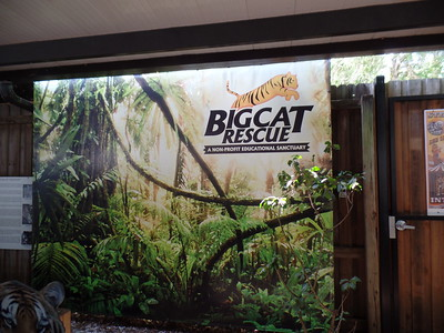 2017-03-10 - Big Cats Rescue with Natalie & Travis