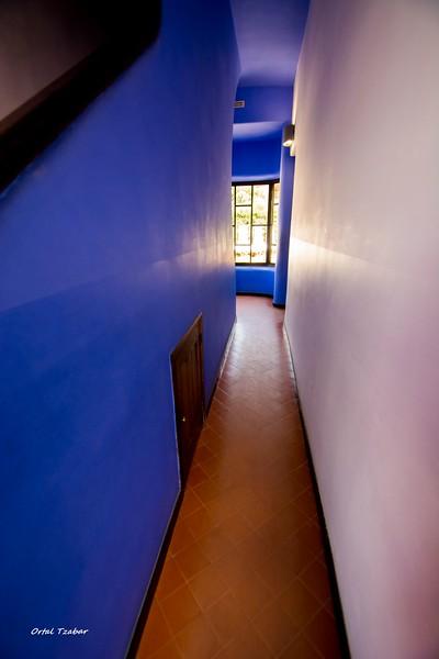 הבית הכחול של גאודי 6.jpg