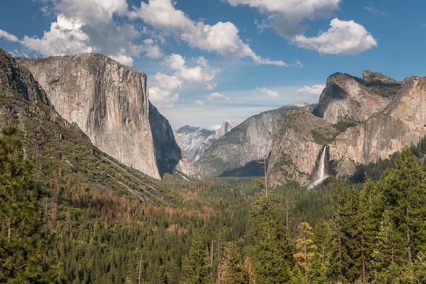 Yosemite - Color