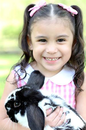 Bowen Easter Mini