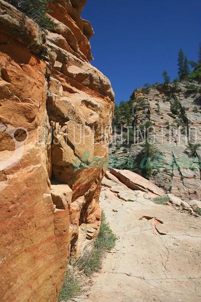 Hiking Path_batch_batch.jpg
